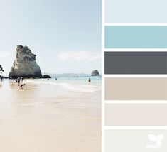 Blue succulent wedding design seeds Ideas for 2019 Coastal Color Palettes, Coastal Colors, Design Seeds, Vacation Images, Living Colors, Blue Succulents, Pallet Painting, Neutral Colour Palette, Color Of Life