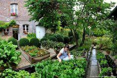 Potager de la Maison du Vert : Légumes frais garantis avec le généreux potager situé juste à côté du restaurant