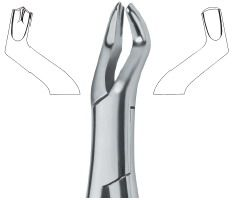 Tooth Extracting Forceps (American)