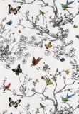 Wallcovering SKU - 2704420 schumaker birds and butterflies