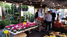 Dutch Flowers on Tour... Wednesday 24th - Sunday 28th September 2014 MPE returns to Glasgow for a 5 day continental market before returning for the much anticipated Christmas Market!