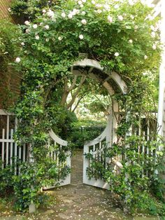 Beautiful Gate and T