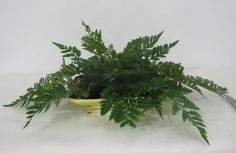 Learn how to make flower centerpieces, church florals, bridal bouquets, corsages, boutonnieres and more.  Buy wholesale flowers, greenery and discount florist supplies.