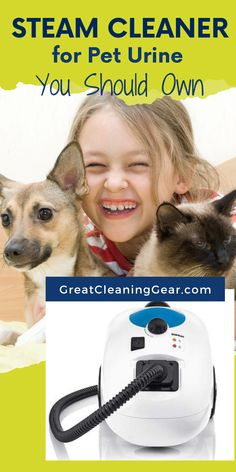 Steam Cleaner for Pet Urine You Should Own. Get the best steam cleaners for the pet urine if you are a pet owner. Steam cleaners are useful as you can't live in a house that has urine stains. Cleaning Pet Urine, Cleaning Carpet Stains, Carpet Cleaning Machines, Floor Cleaning, Home Steam Cleaner, Diy Floor Cleaner, Steam Cleaners, Steam Clean Carpet, How To Clean Carpet