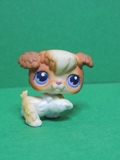 #37 Chien Caniche Dog Puppy brown & white Poodle LPS Littlest Pet Shop Figurine