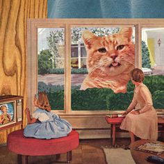 Why, Mr. Whiskers, Why?  by Melissa Gable #collage #cat #retro