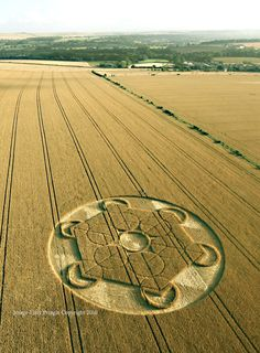 Crop Circle at Nursteed Farm, nr Devizes, Wiltshire. Reported 17th August 2016