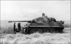 A Tiger 1 with very interesting  camouflage scheme resting in a large field of wheat.