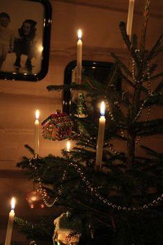Gammeldags juletre Old fashion Christmas tree English Christmas, Prim Christmas, Merry Little Christmas, Christmas Past, Victorian Christmas, Country Christmas, Winter Christmas, Vintage Christmas, Christmas Carol