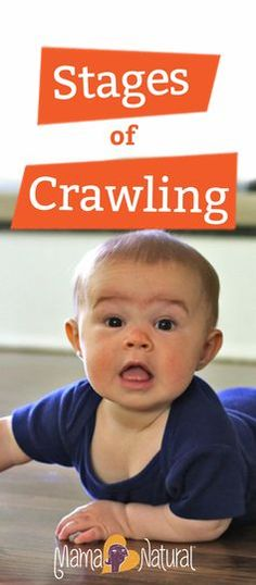 Watch baby Paloma go through the stages of crawling, from newbie to pro in 2 min.