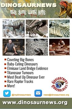 This Week - Coveting Big Bones * Baby-Eating Dinosaurs * Elmisaur Land Bridge Evidence * Titanosaur Tumours * Most Beat Up Dinosaur Ever * Rare Raptor Tracks http://www.dinosaurnews.org #dinosaurs #news #dinosaurnews