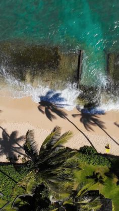 Aerial Drone Video of Palm trees in Paradise on a white sand beach in Hawaii on the Hawaiian Island of Oahu Ocean Photography, Drone Photography, Summer Pictures, Beach Pictures, Best Beach In Florida, Ocean Video, Beach Room, Aerial Drone, Beach Design