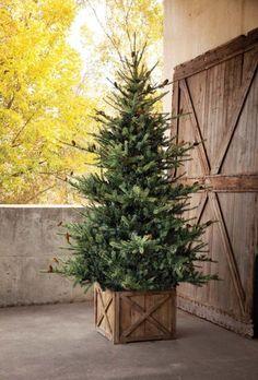 Tree Collar Christmas, Christmas Tree Box Stand, Spruce Christmas Tree, Holiday Tree, Christmas Tree Farms, Natural Christmas Tree, Real Christmas Tree, Christmas Lights, Christmas Wreaths