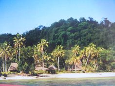 Qamea Island Dolores Park, Island, Places, Blog, Travel, Lugares, Viajes, Traveling, Trips