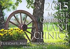 Master Gardener Plant Clinics every Tuesday through August.  Get your gardening questions answered!
