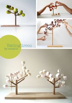 Eating trees.  I would love to make something for this as a bird feeder!
