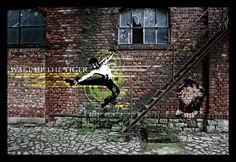 Modern Street Art and Graffiti