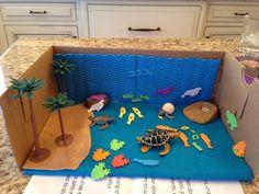 Our Sea Turtle Diorama Science Activities For Kids, Kindergarten Activities, Science Projects, Ocean Habitat, Turtle Habitat, Ocean Diorama, Ocean Projects, Art Projects, World Turtle Day