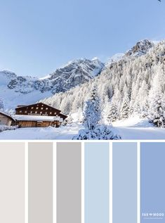 Winter mood board | Blue and grey winter color palette #winter #snow #wintercolor #colorpalette
