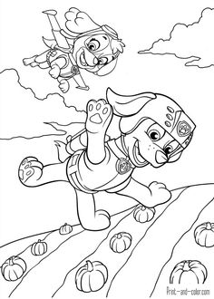 Skye - Paw Patrol Coloring Pages | Zac party | Pinterest | Paw ...