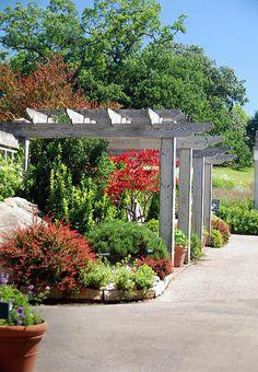 Spectacular The Clotilde Irvine sensory garden a beautiful area highlighting a pergola leading to the Grace B