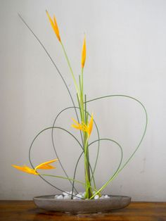 She lives in Auroville, with her husband and her daughter, and gives talks and classes on Ikebana all year round.