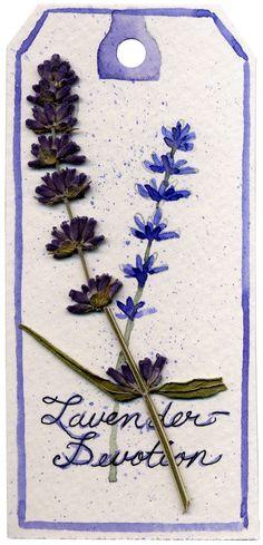 Lavender tag