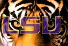 LSU Tiger Eyes