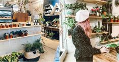 This Hidden Cafe In Toronto Is Also A Mini Succulent Shop And It's So Adorable featured image Toronto Life, Wanderlust Travel, Ontario, Adventure Travel, Succulents, Plant, Mini, Coffee Shops, Bakeries