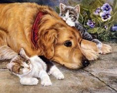Golden Retriever Dogs NEW DIY Diamond Painting Animals Needlework Crafts cats Full Diamond Embroidery Home Paint 70200 Cross Paintings, Animal Paintings, Animals And Pets, Cute Animals, Beautiful Dogs, Dog Art, Painting & Drawing, Cute Cats, Kittens