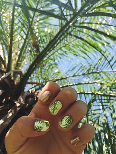 Palm frond nails!!!