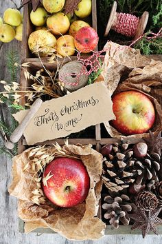 Christmas Fruit and Greens ~ Mary Walds Place - VIBEKE DESIGN: En jul i rødt !