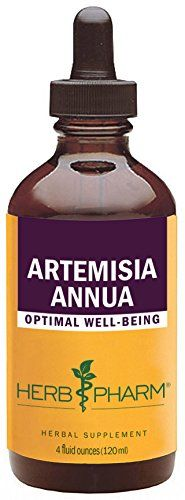 Cheap Herb Pharm Certified Organic Artemisia Annua (Sweet Annie) Extract  4 Ounce https://teaforweightlossusa.info/cheap-herb-pharm-certified-organic-artemisia-annua-sweet-annie-extract-4-ounce/
