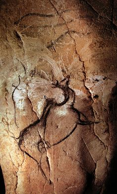 A Gallery of Cave Paintings from the Chauvet Cave as part of the Bradshaw Foundation France Rock Art Archive. The Chauvet Cave is one of the most famous prehistoric rock art sites in the world. Chauvet Cave, Art Pariétal, Paleolithic Art, Cave Drawings, Art Sites, Indigenous Art, Human Art, Ancient Artifacts, Native American Art