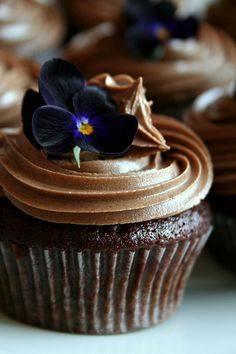 Vegan chocolate cupcake. Photo by Elina Innanen. Recipe from 'Vegan Cupcakes Take Over The World'.  Food photography
