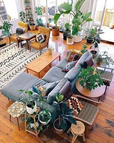 Boho living room with tons of plants #plants #boho #bohome #homedecor