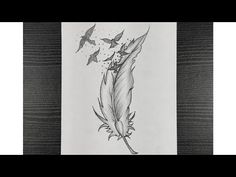 How To Draw Bird Feather || Bird Feather Drawing With Pencil || Step By Step || Pencil sketching - YouTube Bird Drawings, Pencil Drawings, Feather Drawing, Pencil Sketching, Bird Feathers, Moose Art, Youtube, Animals, Drawings Of Birds