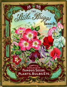 vintage gardening catalog