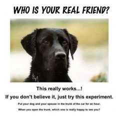 Who is your real friend?