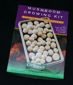 Soil-Net.com - Growing Mushrooms