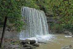Waterfall in Rock Glen Conservation Area, Arkona Ontario