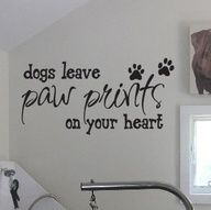 for the dogs room