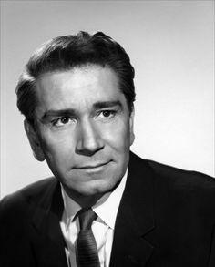 Richard Conte (24 de marzo de 1910 – 15 de abril de 1975) fue un actor estadounidense, conocido por sus numerosas interpretaciones cinematográficas entre las décadas de 1940 y 1970, entre ellas las que hizo para I'll Cry Tomorrow y El padrino.