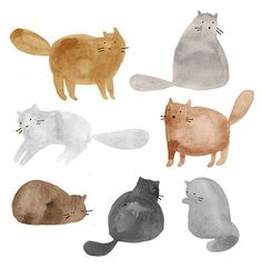 cat, art, and illustration-bilde Art And Illustration, Cat Illustrations, Watercolor Illustration Tutorial, Technical Illustration, I Love Cats, Crazy Cats, Watercolor Cat, Simple Watercolor Paintings, Watercolor Ideas