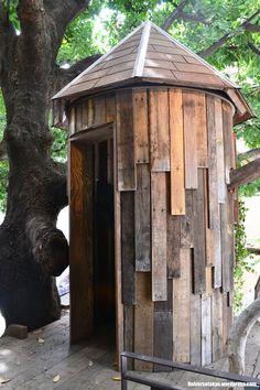 お店のシンボルでもあるツリーハウス。実際に中に入ることもできちゃいます☆