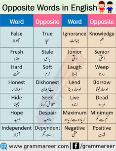 200 Common Opposite Words List in English - Grammareer Opposite Words For Kids, English Opposite Words, English Word Meaning, Learn English Words, English Study, English Sentences, English Vocabulary Words, English Phrases, English Grammar