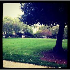 Nice park.. Nice memory