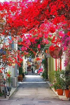 Nafplio, Peloponnese, Greece with beautiful bougainvillea Places Around The World, Oh The Places You'll Go, Places To Travel, Around The Worlds, Travel Destinations, Travel Tips, Travel Hacks, Travel Photos, Beautiful Streets