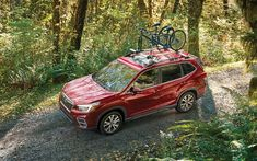 Chatham Parkway Subaru Cpsubaru Profile Pinterest