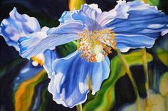 Watercolour Flower Paintings by Marney Ward | Cuded